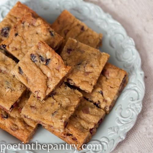 blueberry craisin bars