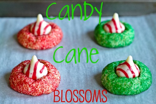 Hershey's Kisses Candy Cane Blossoms - poet in the pantry
