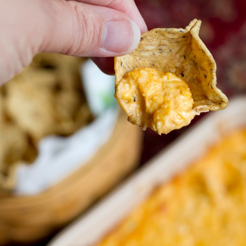 Buffalo Chicken Dip - poet in the pantry