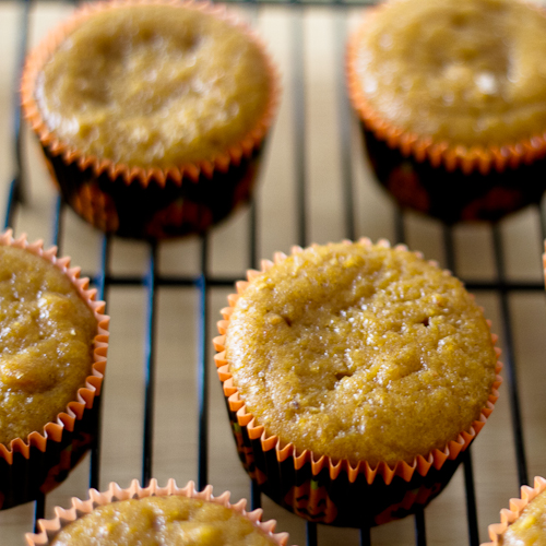 Orange Pumpkin Muffins - poet in the pantry