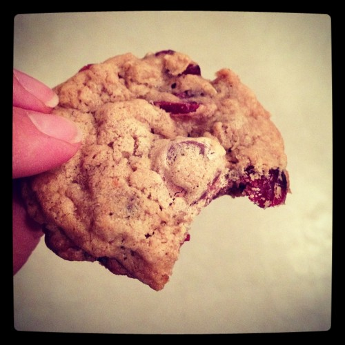 Oatmeal Cookie with Chocolate Chips and Cranberries from Food For Thought - poet in the pantry