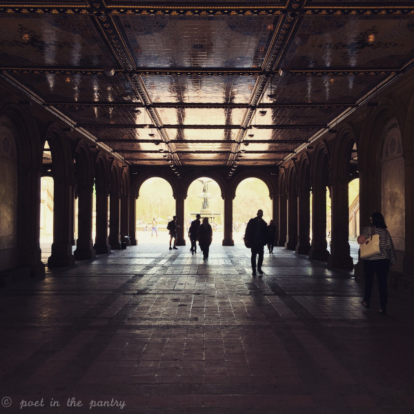 Bethesda Terrace - Central Park - New York City - Poet in the Pantry