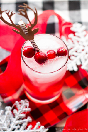 Cranberry Gin Fizz & A HUGE Amazon Giveaway for Christmas Week!