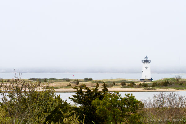 Edgartown, MA, has that old New England feel, protected from over-development by being located on Martha's Vineyard. {sponsored post}