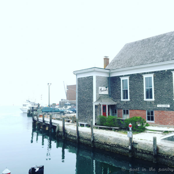 The area around the Steamship Authority's ferry in Woods Hole, MA, is worth investigating while you wait for the ferry. {sponsored post}