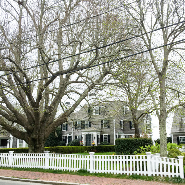 The Captains' homes in Edgartown are quite enchanting