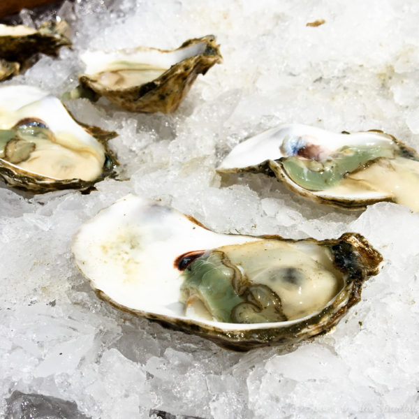 Oysters! When you're on Martha's Vineyard, you can't forget about the oysters! {sponsored post}