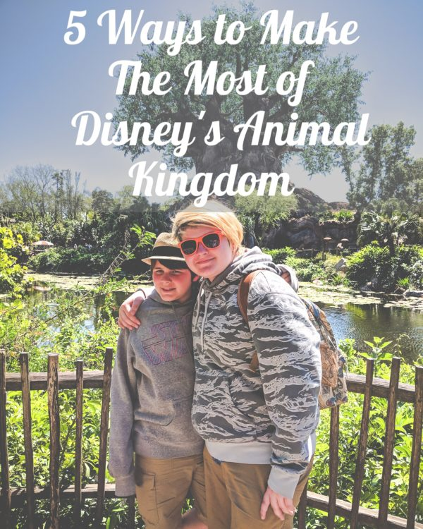5 Ways to Make The Most of Disney's Animal Kingdom