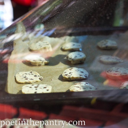 cookie dough freshly popped in the car