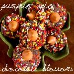 pumpkin spice chocolate blossoms