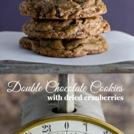 Double Chocolate Cookies with Dried Cranberries - poet in the pantry