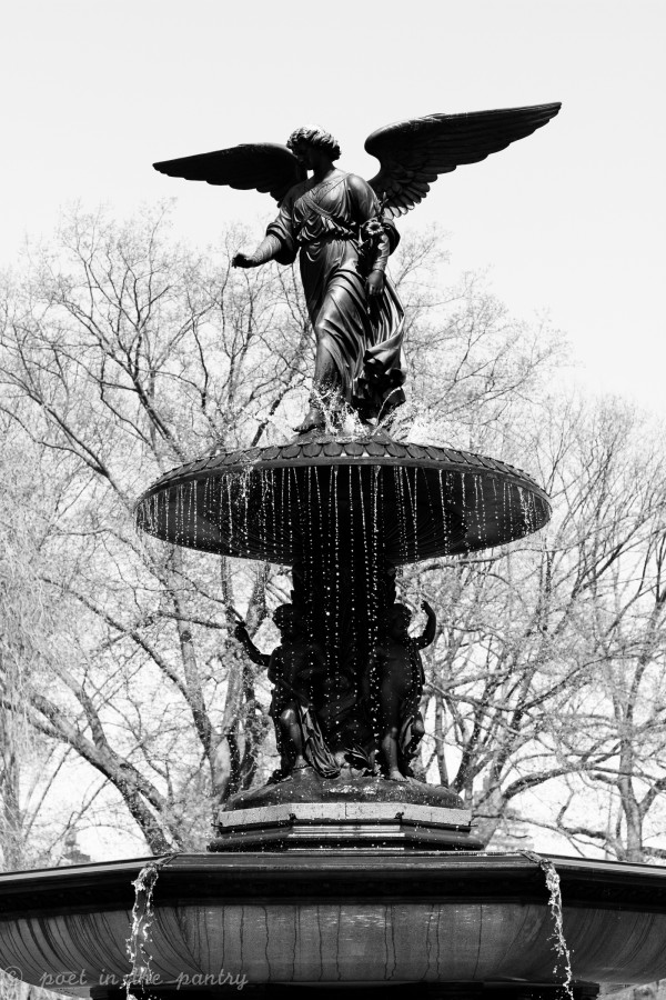 Bethesda fountain in Cental Park - Poet in the Pantry