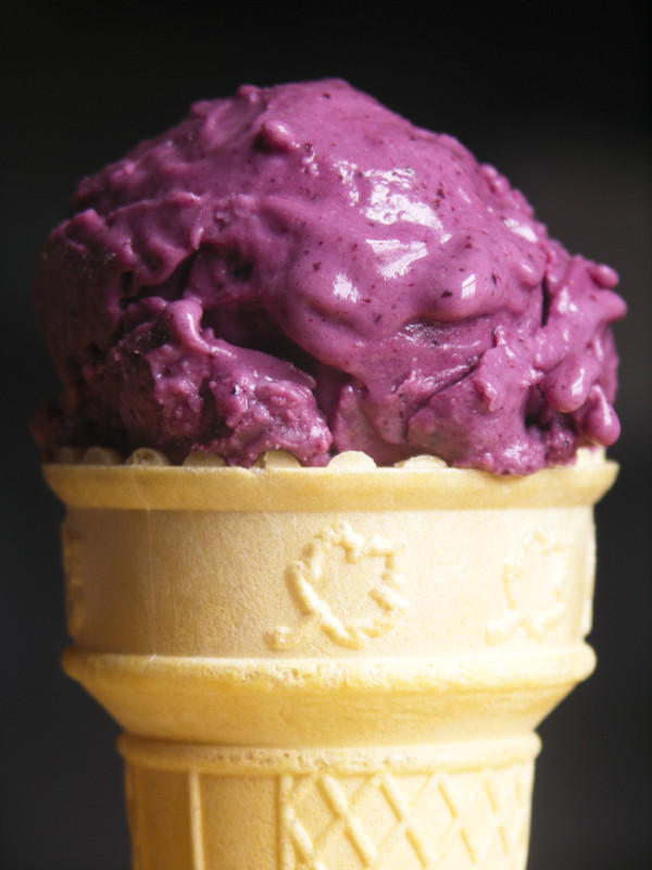 Blueberry Frozen Yogurt from Foodie With Family