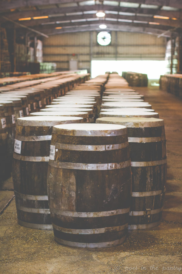 Barrels lined up with TABASCO pepper mash. The mash is aged for 3 years before it's mixed and bottled. {sponsored post}