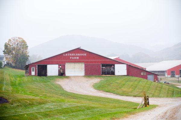 Laurelbrook Farms during Cabot Open Farm Sunday 2016