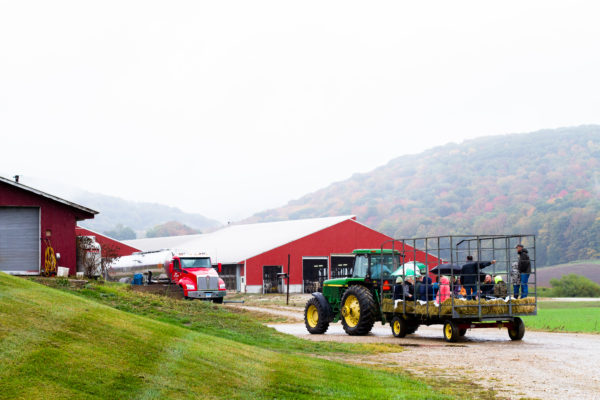 hay ride at Laurelbrook Farm during Cabot Open Farm Sunday 2016