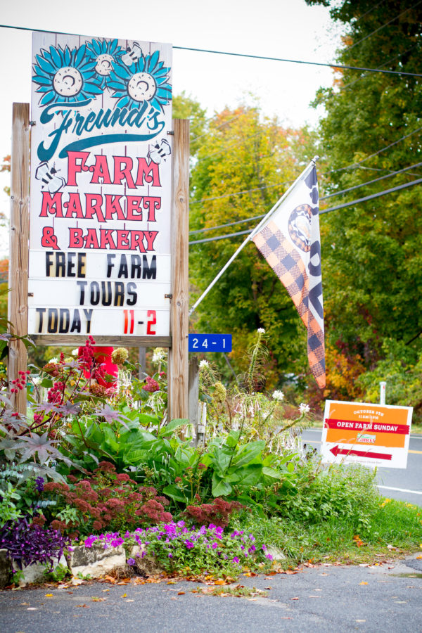 Freund's Farm and Market during Cabot Open Farm Sunday 2016