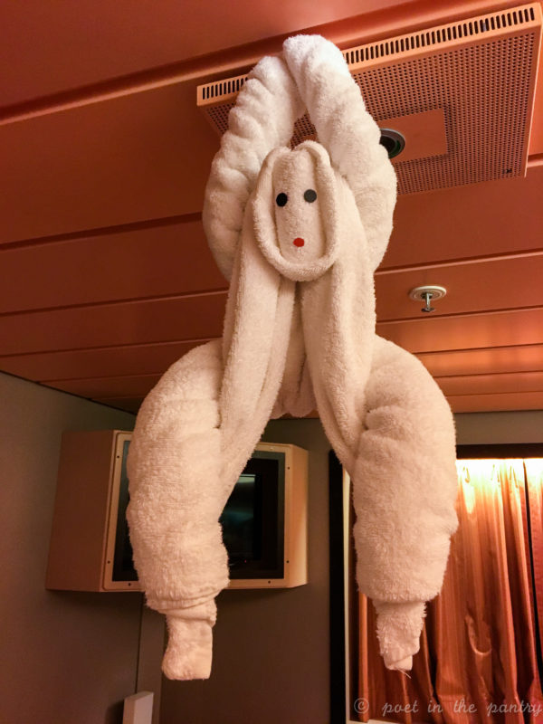 towel animal on Carnival Elation