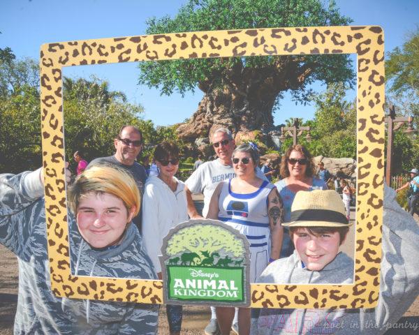 Animal Kingdom, Walt Disney World